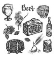 Hand drawn beer set vintage color engraving
