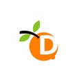 orange fruit letter d vector image