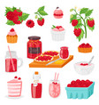 raspberry berrying ripe red berry for fresh vector image vector image