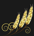 wheat agriculture background vector image