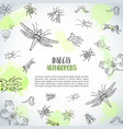 bugs insects hand drawn background pest control vector image vector image