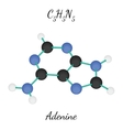 C5H5N5 adenine molecule vector image vector image