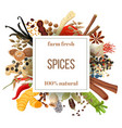 culinary spices big set under squire emblem vector image vector image