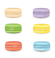 tasty macarons set vector image