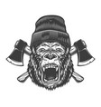 angry gorilla head in lumberjack hat vector image vector image