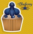 Blueberry design vector image vector image