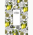 lemon tree frame template hand drawn fruit vector image vector image
