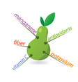pear content properties and benefits vector image vector image