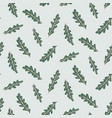 seamless pattern with arugula perfect for design vector image