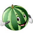 watermelon with face vector image vector image