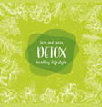 detox label herbs and spices engraving vector image vector image