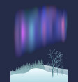 fantastic northern lights over pine forest vector image vector image
