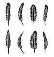 feather silhouette collection vector image vector image