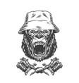 ferocious gorilla head in panama hat vector image vector image