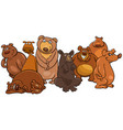 funny bears cartoon animal characters vector image vector image
