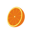 orange fruit isolated icon vector image