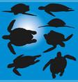 sea turtle poses silhouettes vector image
