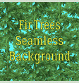 seamless background fir trees vector image vector image
