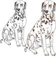 serious dog Dalmatian vector image vector image