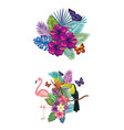 tropical and exotic bird with floral decoration vector image vector image