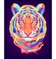 The cute colored tiger head vector image