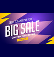 big sale banner design template in vector image vector image