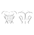 Bodybuilder torso line-art vector image