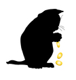 cat cries over money a vector image vector image