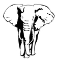 Drawing silhouette of a moving elephant vector image