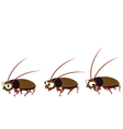 Funny cockroach walking vector image