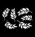 silhouettes branches with laurel leaves vector image vector image