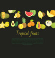 tropical fruits banner with exotic food jackfruit vector image
