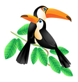 Two Toucans Sitting on a Branch vector image