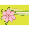 beautiful pink flower vector image