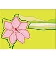 beautiful pink flower vector image vector image