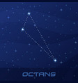 constellation octans octant night star sky vector image vector image