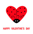 happy valentines day red flying lady bug insect vector image vector image