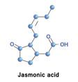 jasmonic acid hormone vector image