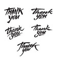 thank you modern brush calligraphy vector image