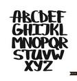 alphabet letters calligraphic script vector image vector image