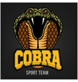 Cobra Mascot - Sport team vector image vector image