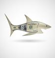 Dollar shark vector image