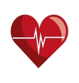 Heart and cardio waves colorful icon vector image