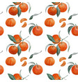 tangerine branch and slice seamless pattern vector image vector image