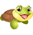 beautiful cute turtler vector image vector image