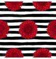 beautiful seamless pattern dahliadrawing vector image vector image