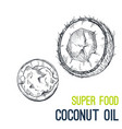 coconut oil super food hand drawn sketch vector image vector image