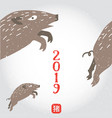 happy new 2019 chinese year boar vector image vector image