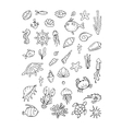 Marine life collection of sketches for your vector image vector image