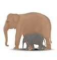 Mother and baby elephant vector image vector image